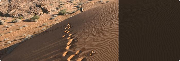 jordanie traveldeal