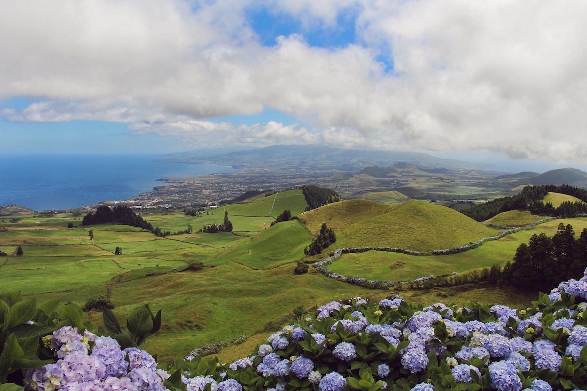 bloemen en landschap, azoren