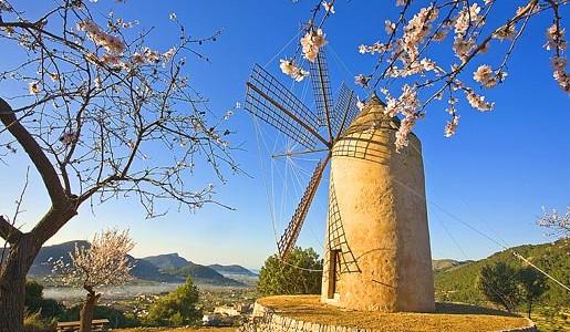 Mallorca: 8 dagen voor €249!