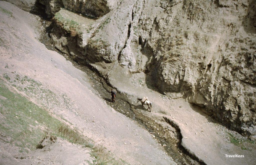 boer met paard in bergkloof