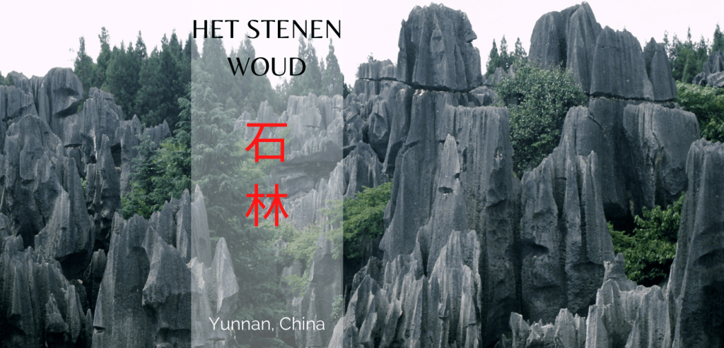 stenen woud travelkees