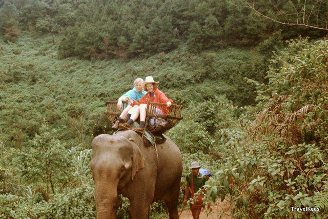 over de rug van de olifant