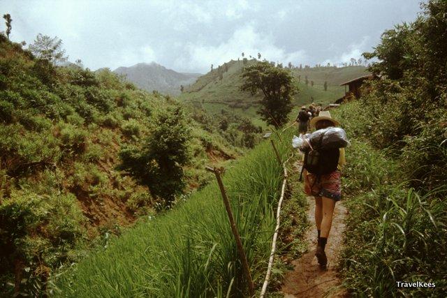 jungletrek thailand