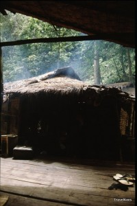 karen dorp