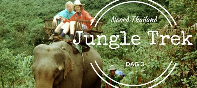 Jungletrek over de rug van de olifant