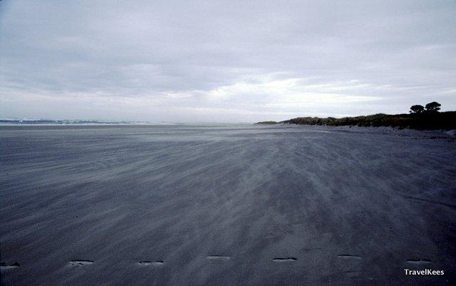beach of farewell spit