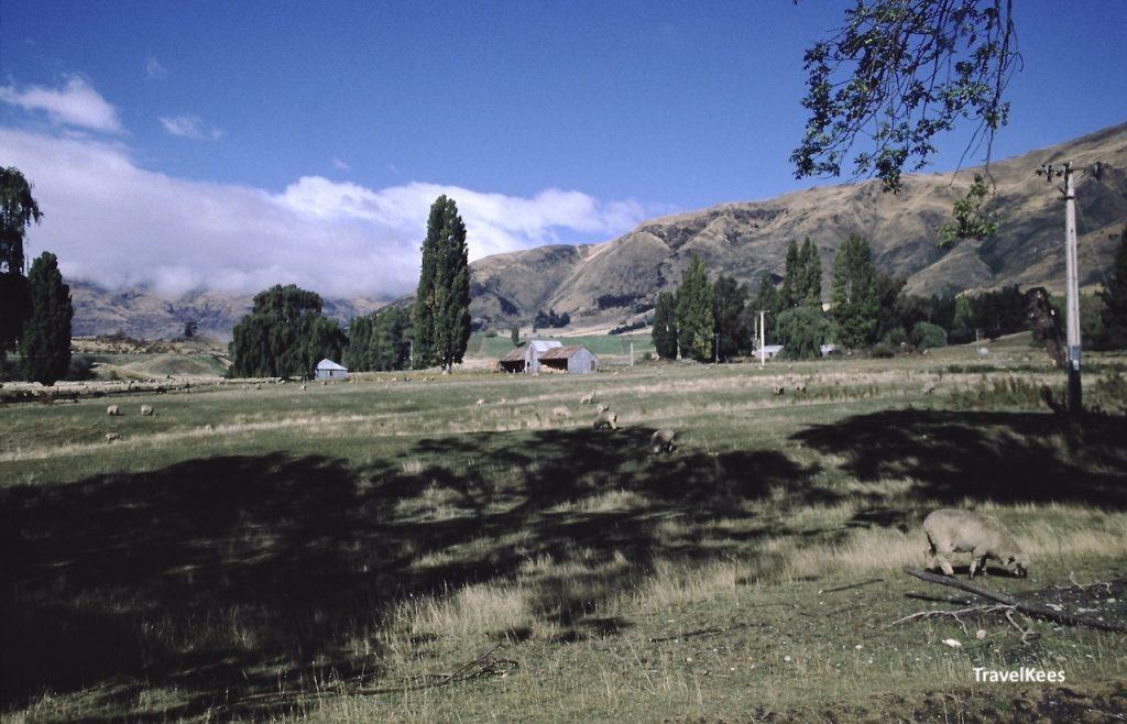 landschap bij Wanaka
