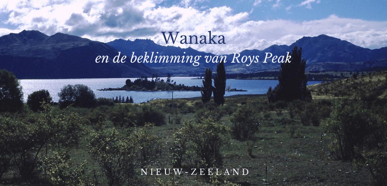 wanaka, travelkees