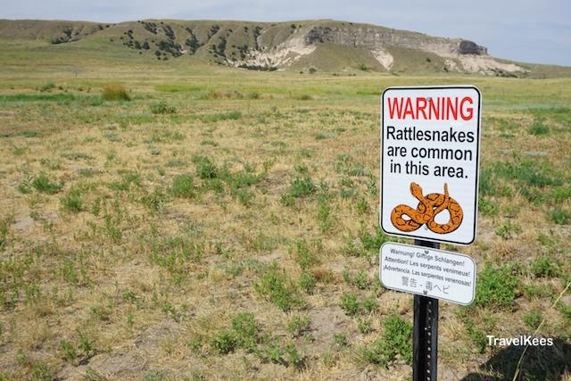 Nebraska, ratelslang, waarschuwing