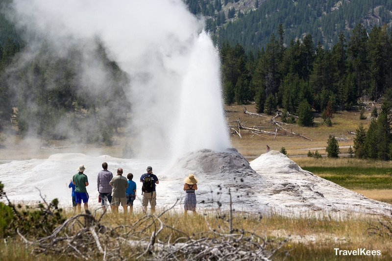 geiser, Yellowstone, national park,