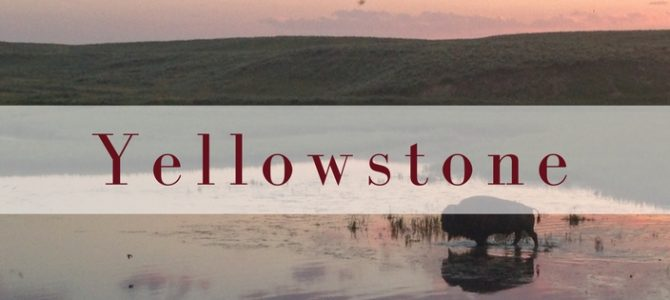 Yellowstone: wat een natuurgeweld
