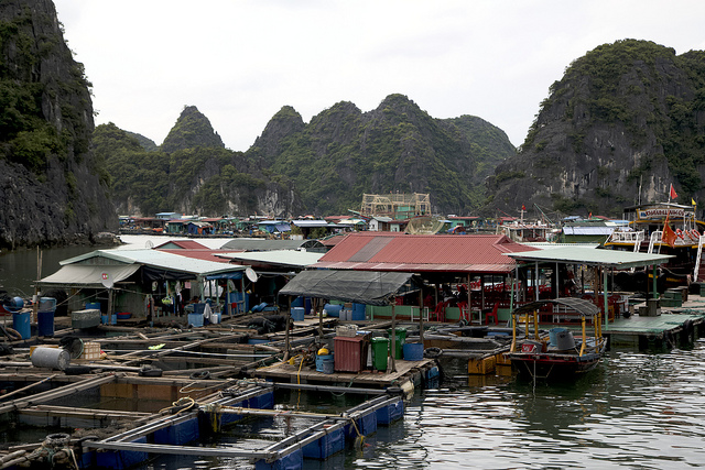 Cai Beo, Lan Ha Bay, drijvend dorp,