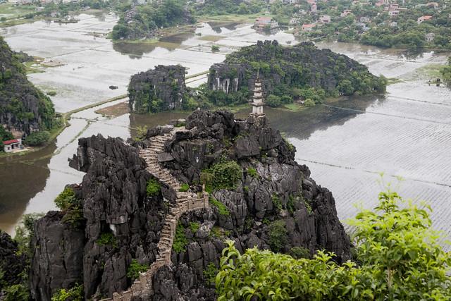 uitzicht vanaf hang mua viewpoint bij ninh binh op ondergelopen rijstvelden en kleine pagode