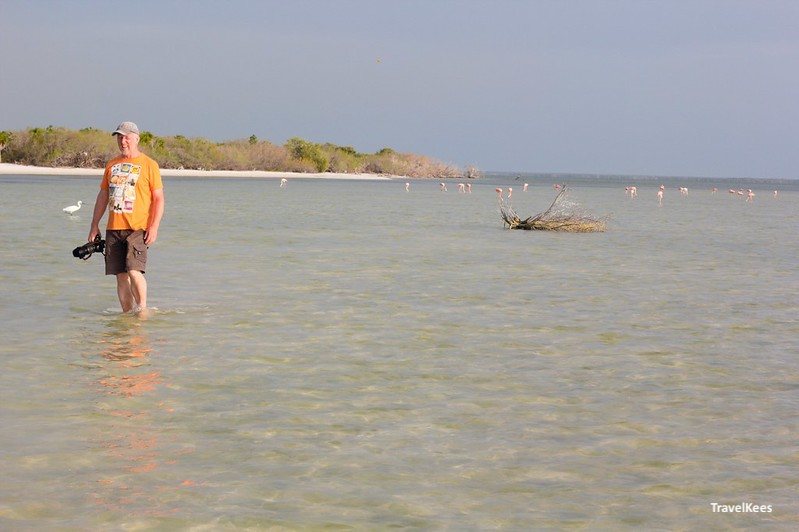 travelkees bij flamingo's; 3 islands tour